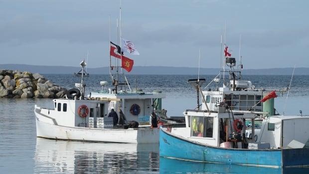 N.S.'de tansiyon yeniden yükselirken sükunet çağrısı. Yerli ıstakoz balıkçılığı