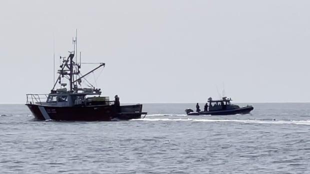 N.S. First Nations şefi, Mi'kmaw balıkçılık sezonu başladığında DFO memurları tarafından tutuklandı