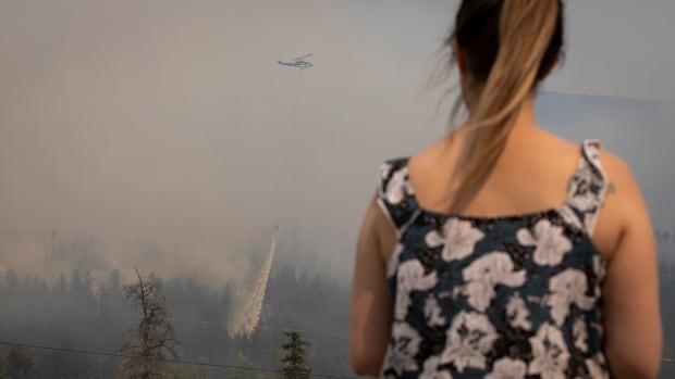 Yaklaşan ısı dalgası, B.C.'yi bastırma çabalarını engelleyebilir. orman yangınları